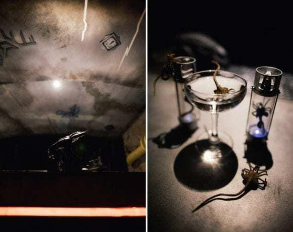 Место есть: обзор секретного бара Кота Шрёдингера