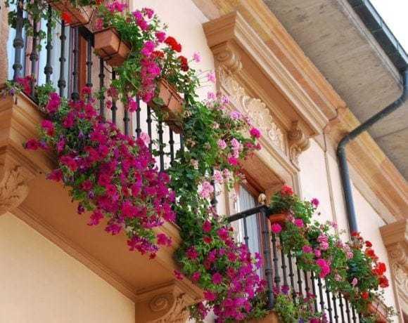 Внесите яркие цветочные акценты в вашу жизнь!