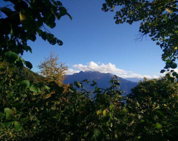Красная Поляна: услышать песню гор