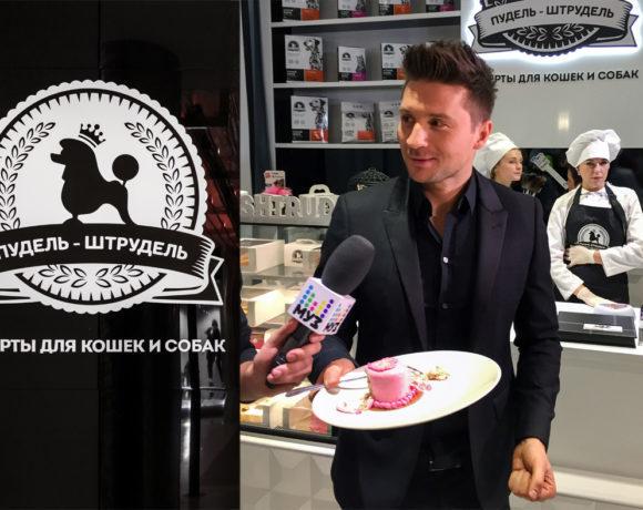 Интерьер магазина десертов для кошек и собак Сергея Лазарева «Пудель Штрудель»