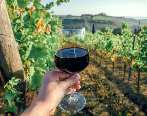 Кьянти – вино на все случаи жизни