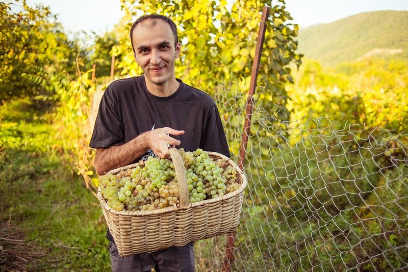 Географическая винная карта: вина Грузии – PORUSSKI.me