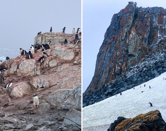 Антарктида: путешествие на Край Света