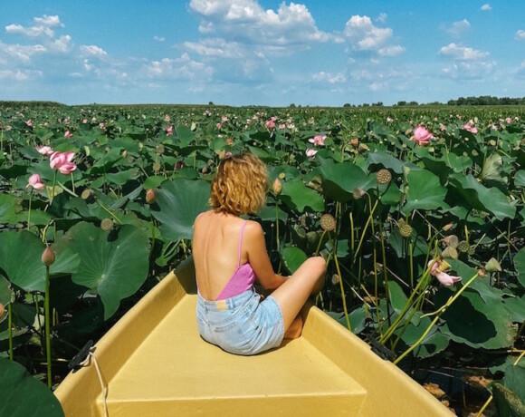 Окунуться в нирвану: долина лотосов в дельте Волги