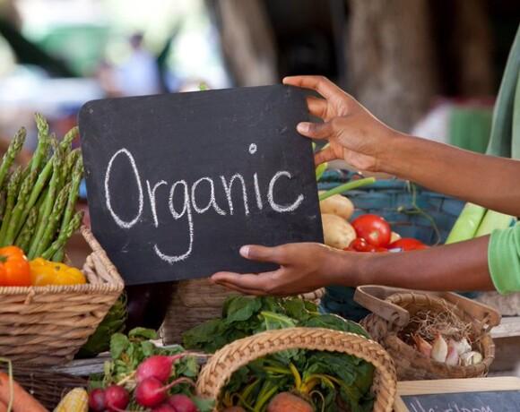 Архитектура питания: эко-, био-, натуральные и органические продукты