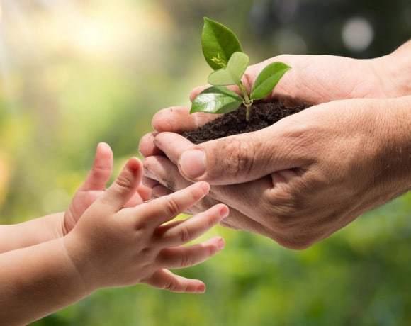 Волонтерство и благотворительность: 5 шагов, чтобы начать