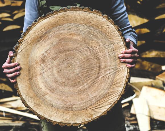 ProWood. Тульская деревянная мануфактура