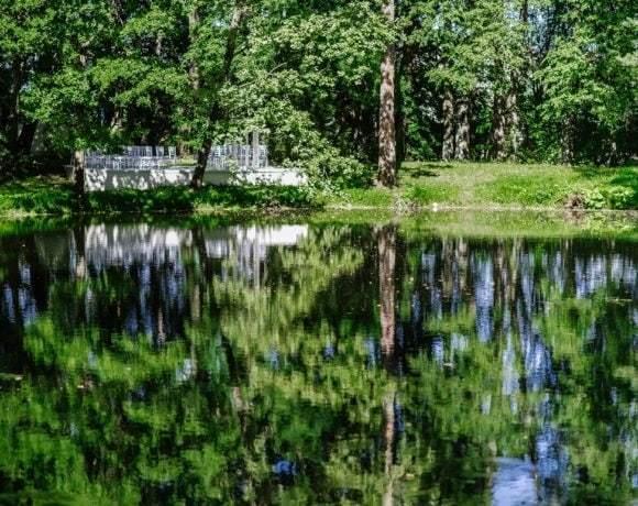 Выбор свадебной площадки: город или природа. Пошаговая инструкция
