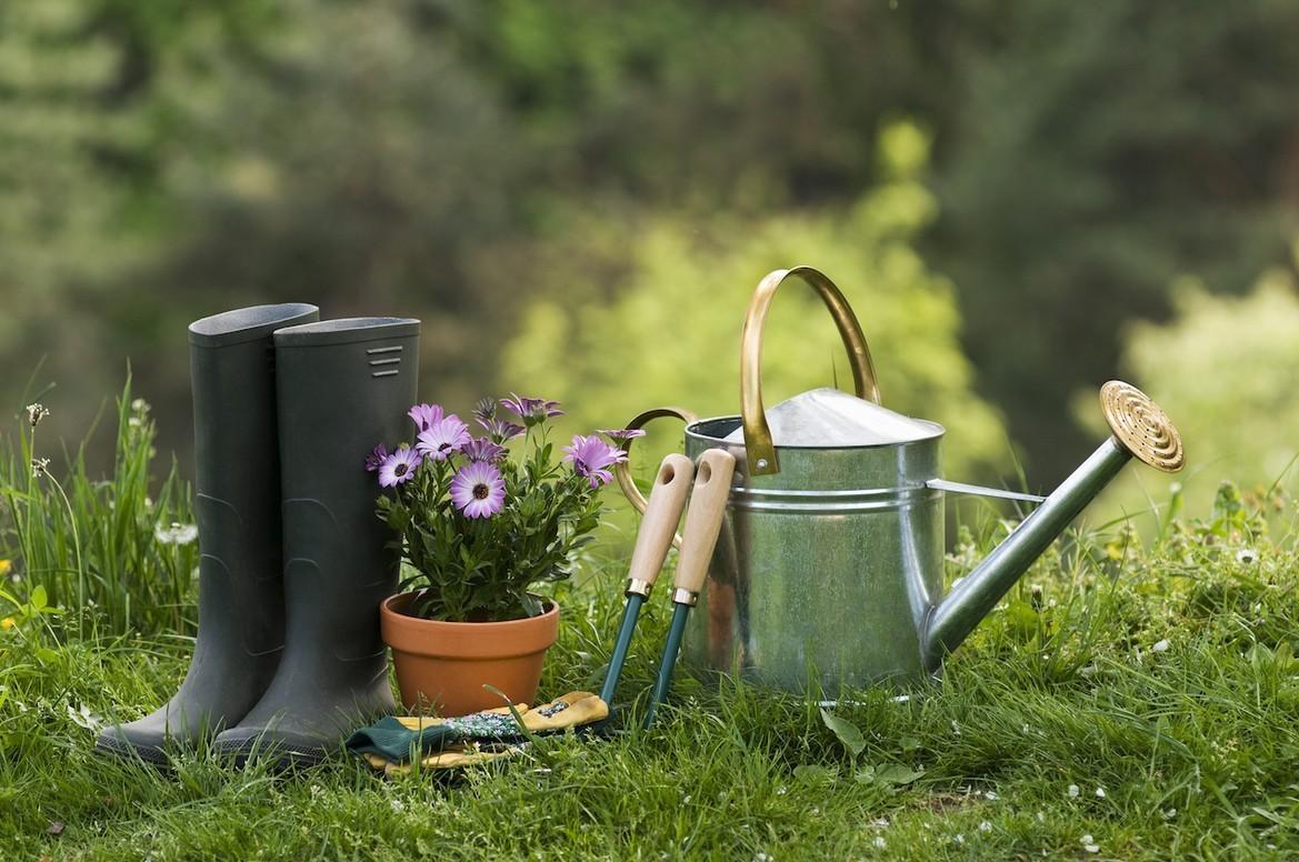 Уход за садом весной